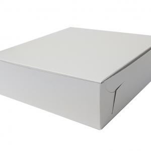 Cake Box 10x10x2.5