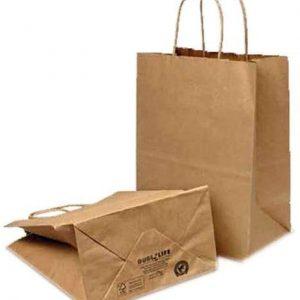 Paper Handle Bag 12″ x 9″ x 15.75″ (219009)