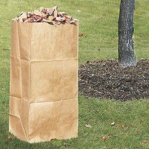 Lawn and Leaf Bags Paper (20)
