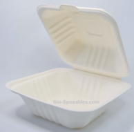 6×6″ Bagasse Clamshell Compostable TakeOut Container 400cs